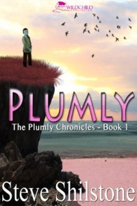 plumly cover