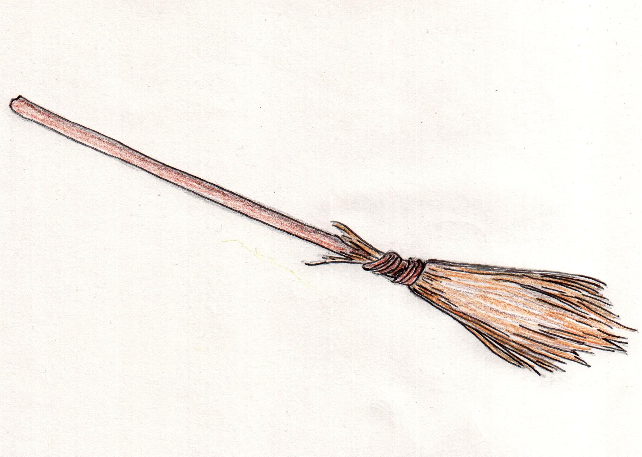 картинка изображение метла арктик колеруемая